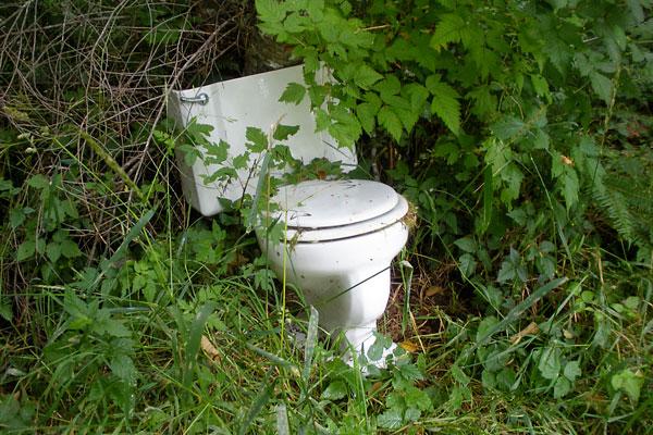 Toilet Bowl Landing